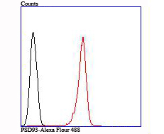 Flow cytometric analysis of SH-SY5Y cells with PSD93 antibody at 1/100 dilution (red) compared with an unlabelled control (cells without incubation with primary antibody; black).