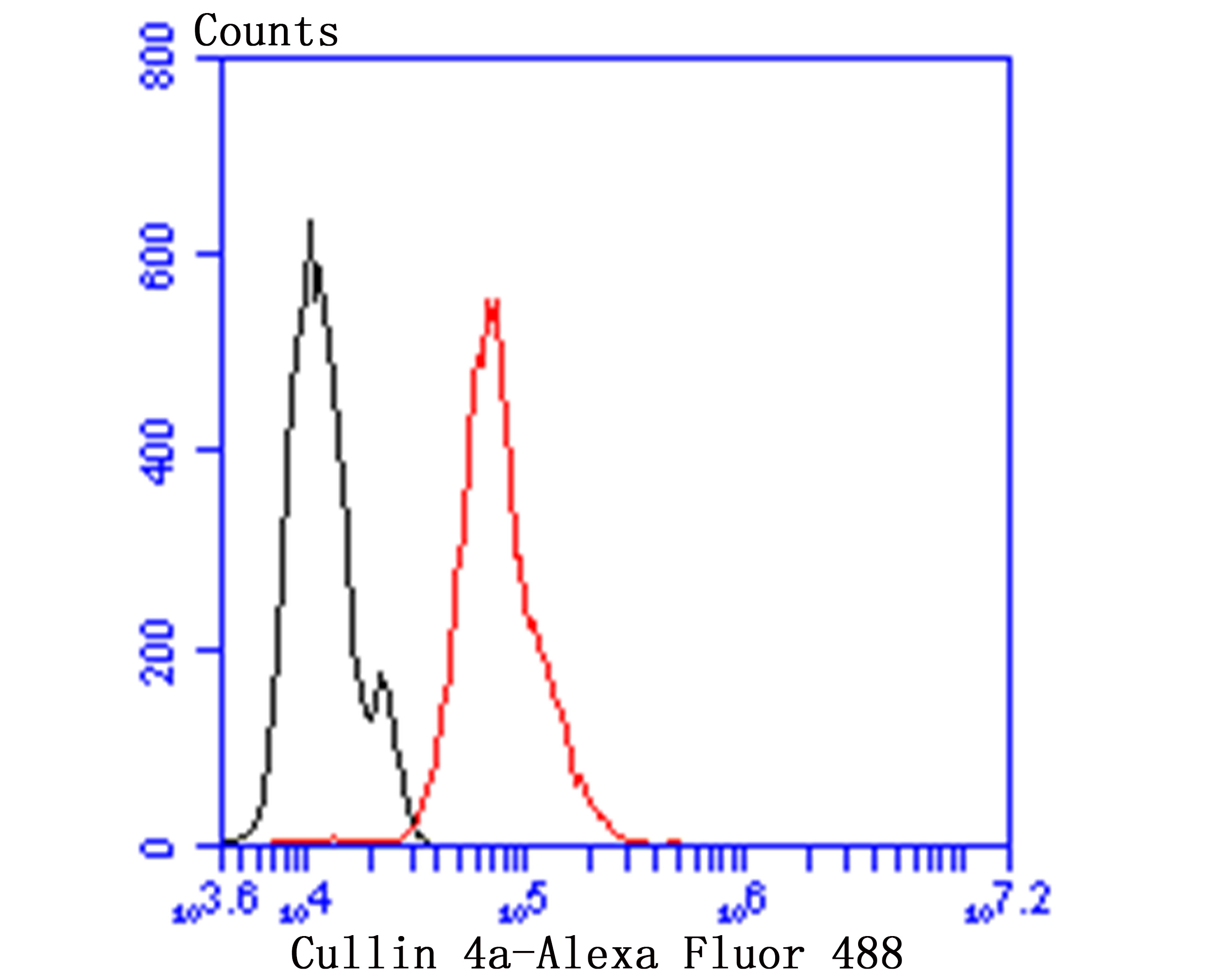 Flow cytometric analysis of Hela cells with Cullin 4a antibody at 1/100 dilution (green) compared with an unlabelled control (cells without incubation with primary antibody; red). Alexa Fluor 488-conjugated goat anti-rabbit IgG was used as the secondary antibody.