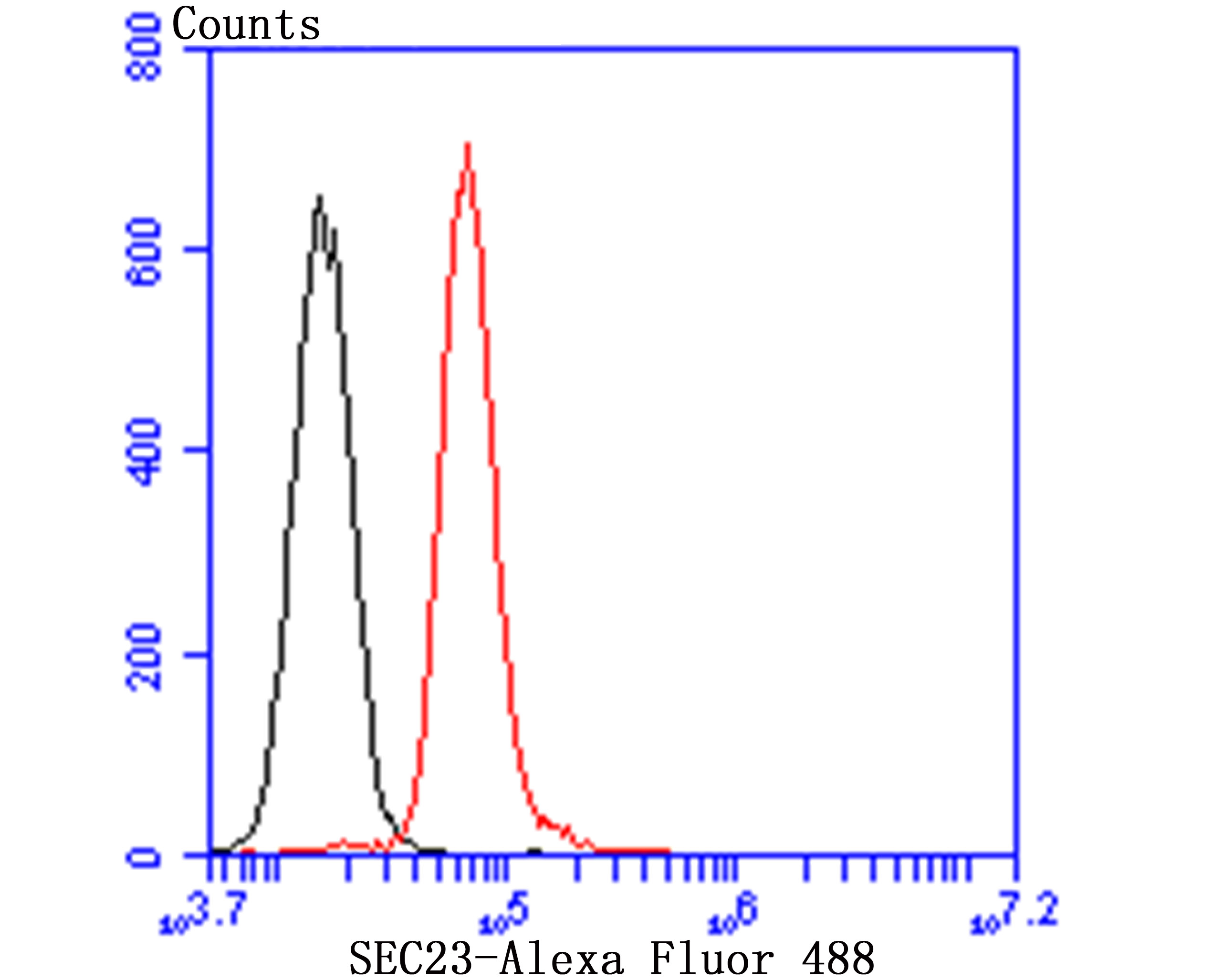 Flow cytometric analysis of HepG2 cells with SEC23 antibody at 1/100 dilution (red) compared with an unlabelled control (cells without incubation with primary antibody; black). Goat anti rabbit IgG (FITC) was used as the secondary antibody.