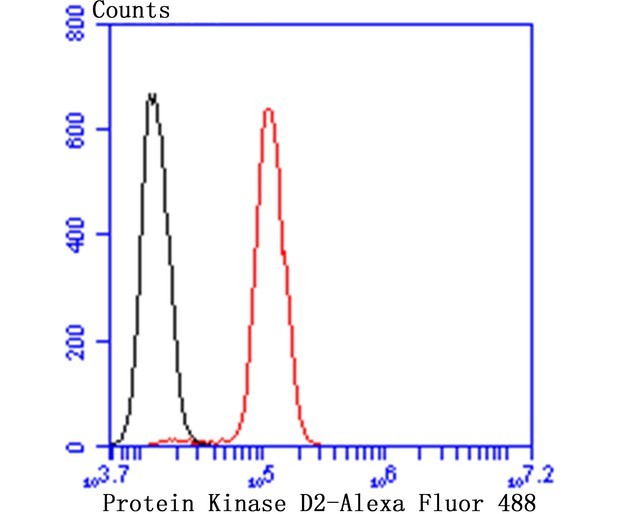 Flow cytometric analysis of SH-SY-5Y cells with Protein Kinase D2 antibody at 1/50 dilution (red) compared with an unlabelled control (cells without incubation with primary antibody; black). Alexa Fluor 488-conjugated goat anti rabbit IgG was used as the secondary antibody.