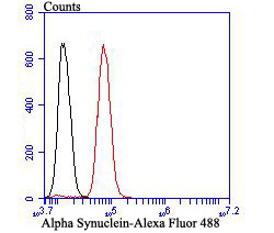 Flow cytometric analysis of SH-SY-5Y cells with Alpha Synuclein antibody at 1/100 dilution (red) compared with an unlabelled control (cells without incubation with primary antibody; black). Alexa Fluor 488-conjugated goat anti-rabbit IgG was used as the secondary antibody.