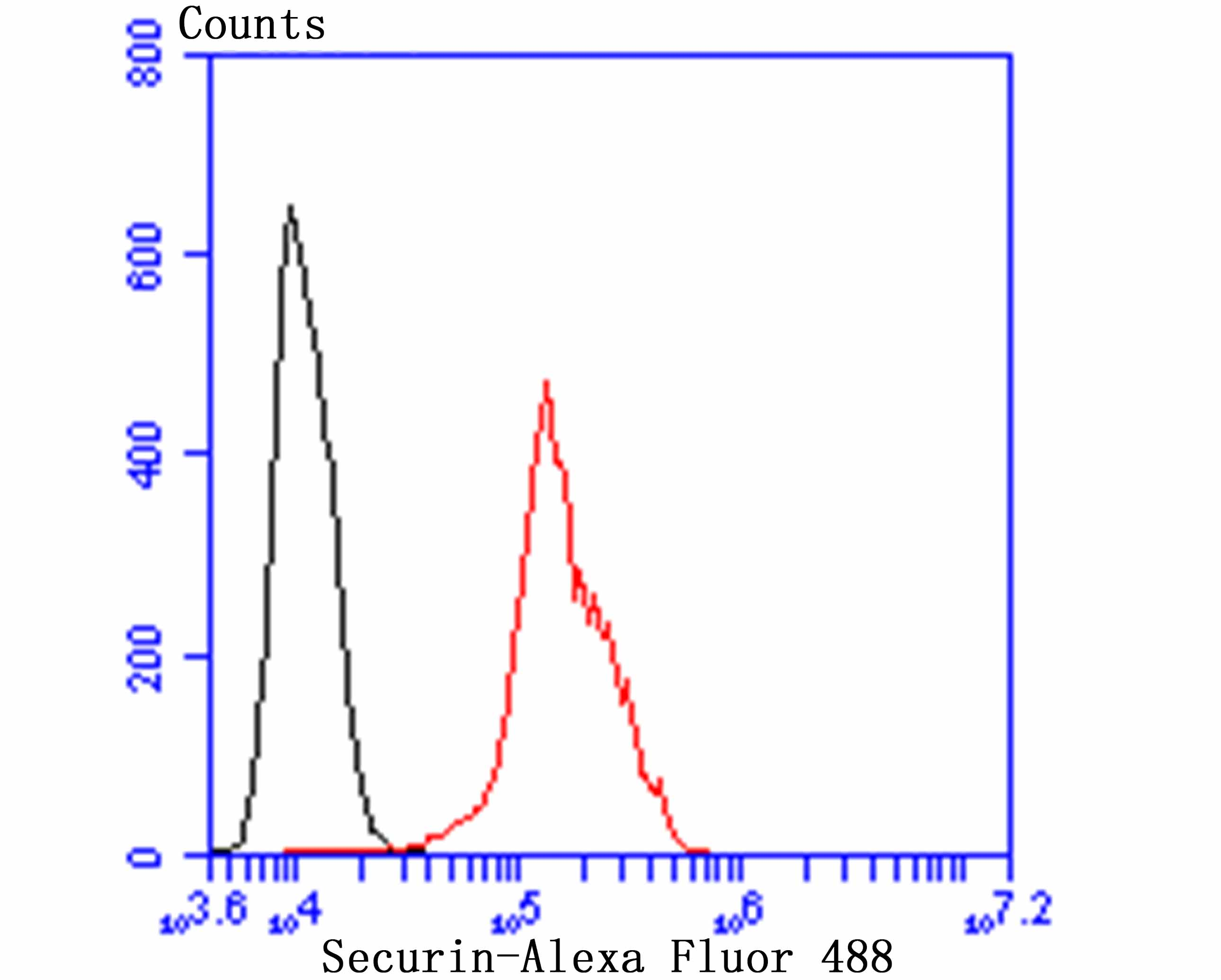 Flow cytometric analysis of A431 cells with Securin antibody at 1/100 dilution (red) compared with an unlabelled control (cells without incubation with primary antibody; black). Alexa Fluor 488-conjugated goat anti-rabbit IgG was used as the secondary antibody.