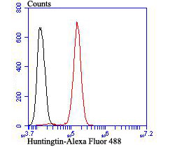 Flow cytometric analysis of SH-SY-5Y cells with Huntingtin antibody at 1/100 dilution (red) compared with an unlabelled control (cells without incubation with primary antibody; black). Alexa Fluor 488-conjugated goat anti rabbit IgG was used as the secondary antibody.