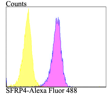 Flow cytometric analysis of A549 cells with SFRP4 antibody at 1/100 dilution (purple) compared with an unlabelled control (cells without incubation with primary antibody; yellow).  Alexa Fluor 488-conjugated goat anti-rabbit IgG was used as the secondary antibody.