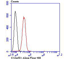 Flow cytometric analysis of SH-SY5Y cells with C12orf51 antibody at 1/100 dilution (red) compared with an unlabelled control (cells without incubation with primary antibody; black).