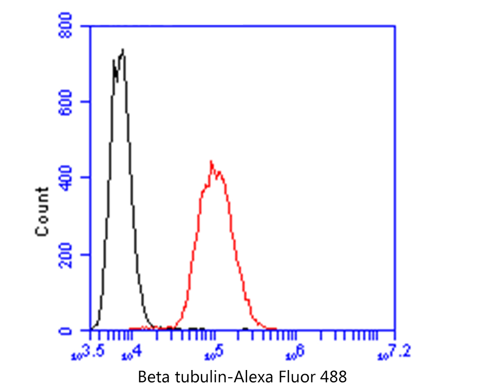 Flow cytometric analysis of SHSY-5Y cells with beta tubulin antibody at 1/50 dilution (black) compared with an unlabelled control (cells without incubation with primary antibody; red). Alexa Fluor 488-conjugated goat anti-mouse IgG was used as the secondary antibody.