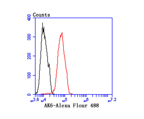 Flow cytometric analysis of MCF-7 cells with AK6 antibody at 1/100 dilution (red) compared with an unlabelled control (cells without incubation with primary antibody; black).