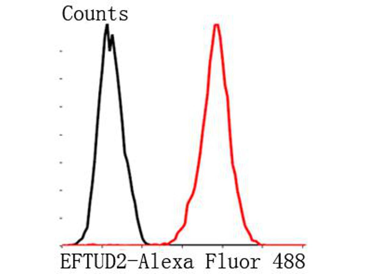 Flow cytometric analysis of MCF-7 cells with EFTUD2 antibody at 1/100 dilution (red) compared with an unlabelled control (cells without ncubation with primary antibody; black). Goat anti mouse IgG (FITC) was used as the secondary antibody.