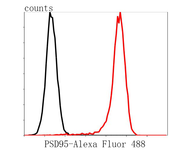 Flow cytometric analysis of PSD95 was done on Hela cells. The cells were fixed, permeabilized and stained with the primary antibody (M1511-4, 1/100) (red). After incubation of the primary antibody at room temperature for an hour, the cells were stained with a Alexa Fluor 488-conjugated Goat anti-Rabbit IgG Secondary antibody at 1/1000 dilution for 30 minutes.Unlabelled sample was used as a control (cells without incubation with primary antibody; black).