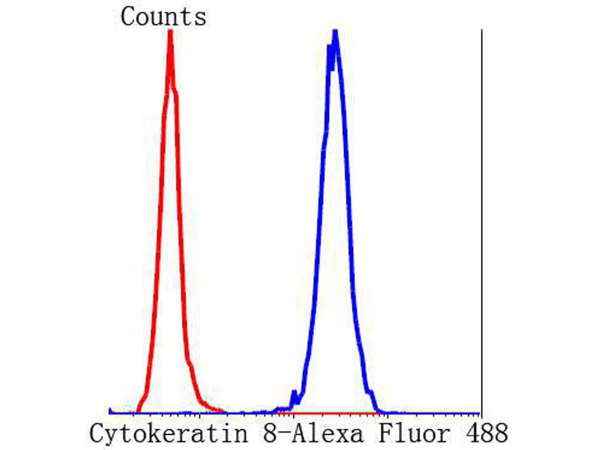 Flow cytometric analysis of Hela cells with FGFR2 antibody at 1/100 dilution (blue) compared with an unlabelled control (cells without incubation with primary antibody; red). Alexa Fluor 488-conjugated Goat anti mouse IgG was used as the secondary antibody.