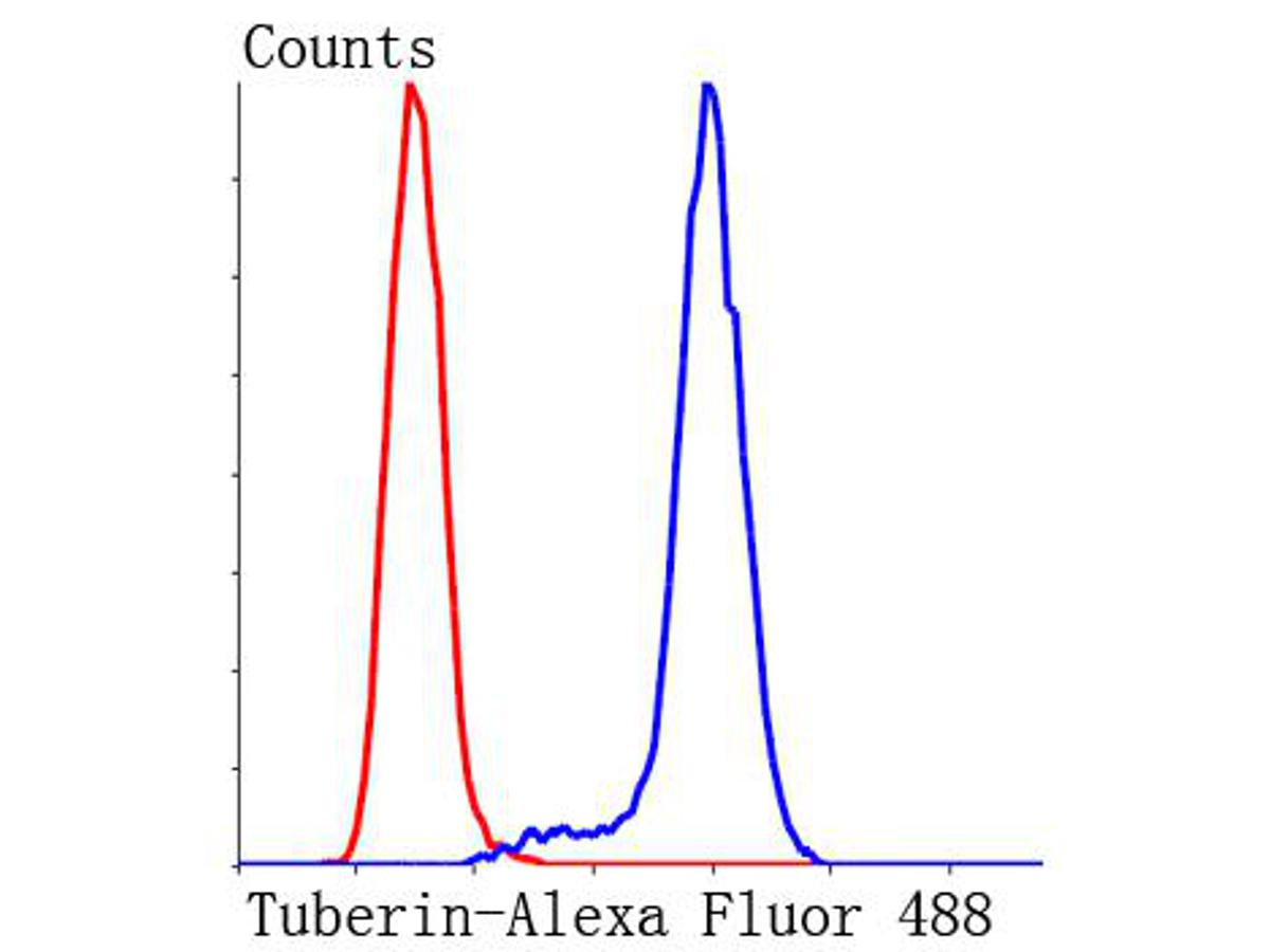 Flow cytometric analysis of Hela cells with Tuberin antibody at 1/50 dilution (blue) compared with an unlabelled control (cells without incubation with primary antibody; red). Alexa Fluor 488-conjugated Goat anti mouse IgG was used as the secondary antibody.