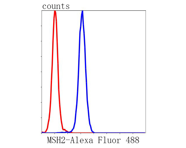 Flow cytometric analysis of MSH2 was done on Hela cells. The cells were fixed, permeabilized and stained with the primary antibody (R1510-32, 1/50) (blue). After incubation of the primary antibody at room temperature for an hour, the cells were stained with a Alexa Fluor 488-conjugated Goat anti-Rabbit IgG Secondary antibody at 1/1000 dilution for 30 minutes.Unlabelled sample was used as a control (cells without incubation with primary antibody; red).