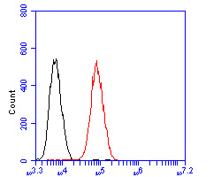 Flow cytometric analysis of ID2 was done on HepG2 cells. The cells were fixed, permeabilized and stained with the primary antibody (R1510-6, 1/50) (red). After incubation of the primary antibody at room temperature for an hour, the cells were stained with a Alexa Fluor 488-conjugated Goat anti-Rabbit IgG Secondary antibody at 1/1000 dilution for 30 minutes.Unlabelled sample was used as a control (cells without incubation with primary antibody; black).
