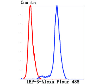 Flow cytometric analysis of HepG2 cells with IPM-3 antibody at 1/100 dilution (red) compared with an unlabelled control (cells without incubation with primary antibody; black).