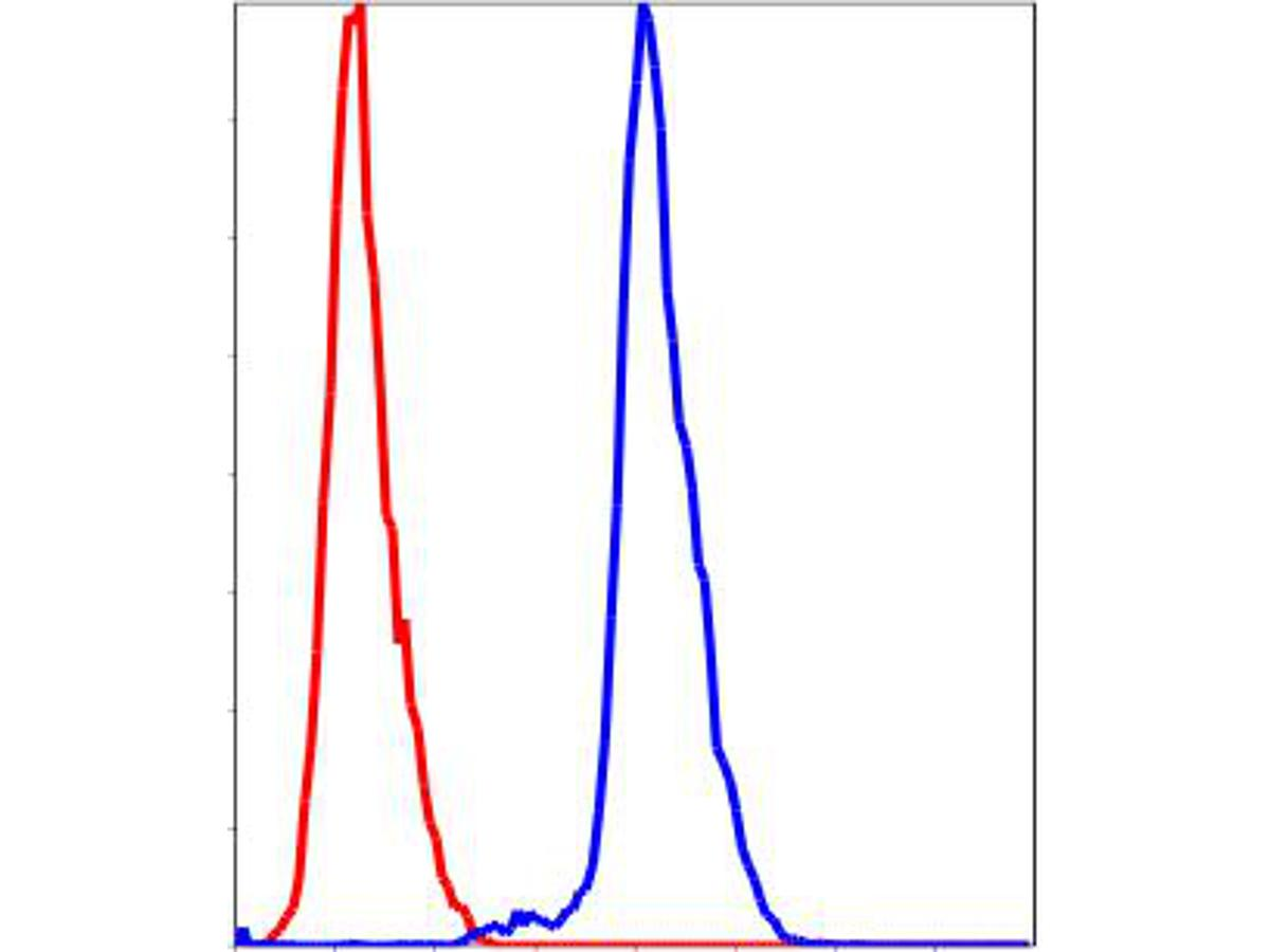 Flow cytometric analysis of HepG2 cells with AKR1C1 antibody at 1/100 dilution (blue) compared with an unlabelled control (cells without incubation with primary antibody; red).
