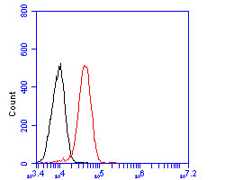 Flow cytometric analysis of CD55 was done on SW1990 cells. The cells were fixed, permeabilized and stained with the primary antibody (EM1902-42, 1/50) (red). After incubation of the primary antibody at room temperature for an hour, the cells were stained with a Alexa Fluor 488-conjugated Goat anti-Mouse IgG Secondary antibody at 1/1000 dilution for 30 minutes.Unlabelled sample was used as a control (cells without incubation with primary antibody; black).