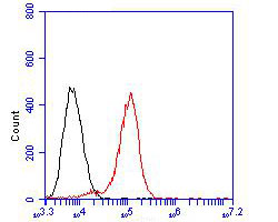 Flow cytometric analysis of CELF2 was done on Daudi cells. The cells were fixed, permeabilized and stained with the primary antibody (EM1902-43, 1/50) (red). After incubation of the primary antibody at room temperature for an hour, the cells were stained with a Alexa Fluor 488-conjugated Goat anti-Mouse IgG Secondary antibody at 1/1000 dilution for 30 minutes.Unlabelled sample was used as a control (cells without incubation with primary antibody; black).