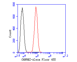 Flow cytometric analysis of CHRNB2 was done on SH-SY5Y cells. The cells were fixed, permeabilized and stained with the primary antibody (ER1902-95, 1/50) (red). After incubation of the primary antibody at room temperature for an hour, the cells were stained with a Alexa Fluor 488-conjugated Goat anti-Rabbit IgG Secondary antibody at 1/1000 dilution for 30 minutes.Unlabelled sample was used as a control (cells without incubation with primary antibody; black).