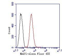 Flow cytometric analysis of MAGT1 was done on PANC-1 cells. The cells were fixed, permeabilized and stained with the primary antibody (ER1902-99, 1/50) (red). After incubation of the primary antibody at room temperature for an hour, the cells were stained with a Alexa Fluor 488-conjugated Goat anti-Rabbit IgG Secondary antibody at 1/1000 dilution for 30 minutes.Unlabelled sample was used as a control (cells without incubation with primary antibody; black).
