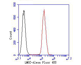 Flow cytometric analysis of LMO2 was done on SW620 cells. The cells were fixed, permeabilized and stained with the primary antibody (ER2001-08, 1/50) (red). After incubation of the primary antibody at room temperature for an hour, the cells were stained with a Alexa Fluor 488-conjugated Goat anti-Rabbit IgG Secondary antibody at 1/1000 dilution for 30 minutes.Unlabelled sample was used as a control (cells without incubation with primary antibody; black).