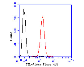 Flow cytometric analysis of TTL was done on SH-SY5Y cells. The cells were fixed, permeabilized and stained with the primary antibody (ER2001-11, 1/50) (red). After incubation of the primary antibody at room temperature for an hour, the cells were stained with a Alexa Fluor 488-conjugated Goat anti-Rabbit IgG Secondary antibody at 1/1000 dilution for 30 minutes.Unlabelled sample was used as a control (cells without incubation with primary antibody; black).