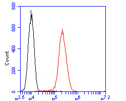 Flow cytometric analysis of GOLGA7 was done on A431 cells. The cells were fixed, permeabilized and stained with the primary antibody (ER2001-22, 1/100) (red). After incubation of the primary antibody at room temperature for an hour, the cells were stained with a Alexa Fluor 488-conjugated goat anti-rabbit IgG Secondary antibody at 1/500 dilution for 30 minutes.Unlabelled sample was used as a control (cells without incubation with primary antibody; blcak).