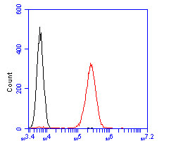 Flow cytometric analysis of KCNQ4 was done on K562 cells. The cells were fixed, permeabilized and stained with the primary antibody (ER2001-23, 1/100) (red). After incubation of the primary antibody at room temperature for an hour, the cells were stained with a Alexa Fluor 488-conjugated goat anti-rabbit IgG Secondary antibody at 1/500 dilution for 30 minutes.Unlabelled sample was used as a control (cells without incubation with primary antibody; blcak).