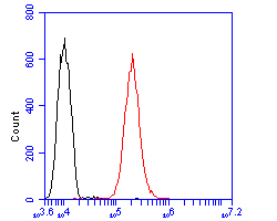 Flow cytometric analysis of ADAM22 was done on SHSY5Y cells. The cells were fixed, permeabilized and stained with the primary antibody (ER2001-24, 1/100) (red). After incubation of the primary antibody at room temperature for an hour, the cells were stained with a Alexa Fluor 488-conjugated goat anti-rabbit IgG Secondary antibody at 1/500 dilution for 30 minutes.Unlabelled sample was used as a control (cells without incubation with primary antibody; blcak).