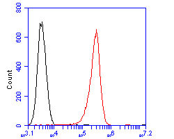 Flow cytometric analysis of Dysbindin was done on MCF-7 cells. The cells were fixed, permeabilized and stained with the primary antibody (ER2001-26, 1/100) (red). After incubation of the primary antibody at room temperature for an hour, the cells were stained with a Alexa Fluor 488-conjugated goat anti-rabbit IgG Secondary antibody at 1/500 dilution for 30 minutes.Unlabelled sample was used as a control (cells without incubation with primary antibody; blcak).