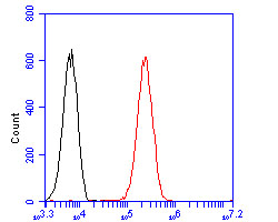 Flow cytometric analysis of CDKN2A/p16INK4a was done on 293 cells. The cells were fixed, permeabilized and stained with the primary antibody (ER2001-30, 1/100) (red). After incubation of the primary antibody at room temperature for an hour, the cells were stained with a Alexa Fluor 488-conjugated goat anti-rabbit IgG Secondary antibody at 1/500 dilution for 30 minutes.Unlabelled sample was used as a control (cells without incubation with primary antibody; blcak).
