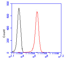 Flow cytometric analysis of CLIC2 was done on K562 cells. The cells were fixed, permeabilized and stained with the primary antibody (ER2001-41, 1/50) (red). After incubation of the primary antibody at room temperature for an hour, the cells were stained with a Alexa Fluor 488-conjugated Goat anti-Rabbit IgG Secondary antibody at 1/1000 dilution for 30 minutes.Unlabelled sample was used as a control (cells without incubation with primary antibody; black).