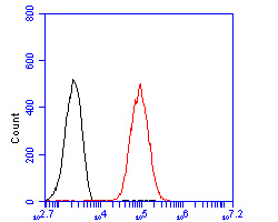 Flow cytometric analysis of SYNDIG1 was done on F9 cells. The cells were fixed, permeabilized and stained with the primary antibody (ER2001-43, 1/100) (red). After incubation of the primary antibody at room temperature for an hour, the cells were stained with a Alexa Fluor 488-conjugated goat anti-rabbit IgG Secondary antibody at 1/500 dilution for 30 minutes.Unlabelled sample was used as a control (cells without incubation with primary antibody; blcak).