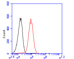 Flow cytometric analysis of HDLBP was done on HepG2 cells. The cells were fixed, permeabilized and stained with the primary antibody (ER2001-48, 1/50) (red). After incubation of the primary antibody at room temperature for an hour, the cells were stained with a Alexa Fluor 488-conjugated Goat anti-Rabbit IgG Secondary antibody at 1/1000 dilution for 30 minutes.Unlabelled sample was used as a control (cells without incubation with primary antibody; black).