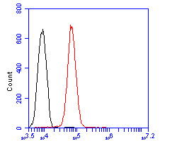 Flow cytometric analysis of Transferrin was done on HepG2 cells. The cells were fixed, permeabilized and stained with the primary antibody (ER2001-53, 1/50) (red). After incubation of the primary antibody at room temperature for an hour, the cells were stained with a Alexa Fluor 488-conjugated Goat anti-Rabbit IgG Secondary antibody at 1/1000 dilution for 30 minutes.Unlabelled sample was used as a control (cells without incubation with primary antibody; black).