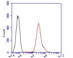 Flow cytometric analysis of Clusterin was done on A549 cells. The cells were fixed, permeabilized and stained with the primary antibody (ER2001-58, 1/100) (red). After incubation of the primary antibody at room temperature for an hour, the cells were stained with a Alexa Fluor 488-conjugated goat anti-rabbit IgG Secondary antibody at 1/500 dilution for 30 minutes.Unlabelled sample was used as a control (cells without incubation with primary antibody; blcak).