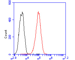 Flow cytometric analysis of Trem2 was done on THP-1 cells. The cells were fixed, permeabilized and stained with the primary antibody (ER2001-59, 1/50) (red). After incubation of the primary antibody at room temperature for an hour, the cells were stained with a Alexa Fluor 488-conjugated Goat anti-Rabbit IgG Secondary antibody at 1/1000 dilution for 30 minutes.Unlabelled sample was used as a control (cells without incubation with primary antibody; black).