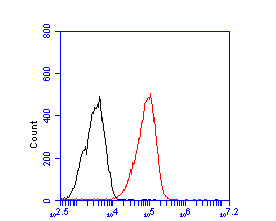 Flow cytometric analysis of RanBP9 was done on F9 cells. The cells were fixed, permeabilized and stained with the primary antibody (ER2001-63, 1/50) (red). After incubation of the primary antibody at room temperature for an hour, the cells were stained with a Alexa Fluor 488-conjugated Goat anti-Rabbit IgG Secondary antibody at 1/1000 dilution for 30 minutes.Unlabelled sample was used as a control (cells without incubation with primary antibody; black).