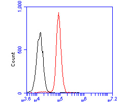 Flow cytometric analysis of SerpinA6 was done on HepG2 cells. The cells were fixed, permeabilized and stained with the primary antibody (ER2001-70, 1/50) (red). After incubation of the primary antibody at room temperature for an hour, the cells were stained with a Alexa Fluor 488-conjugated Goat anti-Rabbit IgG Secondary antibody at 1/1000 dilution for 30 minutes.Unlabelled sample was used as a control (cells without incubation with primary antibody; black).