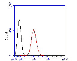 Flow cytometric analysis of GRK1 was done on SHSY5Y cells. The cells were fixed, permeabilized and stained with the primary antibody (ER2001-72, 1/50) (red). After incubation of the primary antibody at room temperature for an hour, the cells were stained with a Alexa Fluor 488-conjugated Goat anti-Rabbit IgG Secondary antibody at 1/1000 dilution for 30 minutes.Unlabelled sample was used as a control (cells without incubation with primary antibody; black).