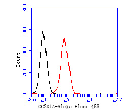 Flow cytometric analysis of CC2D1A was done on MCF-7 cells. The cells were fixed, permeabilized and stained with the primary antibody (ET7111-22, 1/50) (red). After incubation of the primary antibody at room temperature for an hour, the cells were stained with a Alexa Fluor 488-conjugated Goat anti-Rabbit IgG Secondary antibody at 1/1000 dilution for 30 minutes.Unlabelled sample was used as a control (cells without incubation with primary antibody; black).