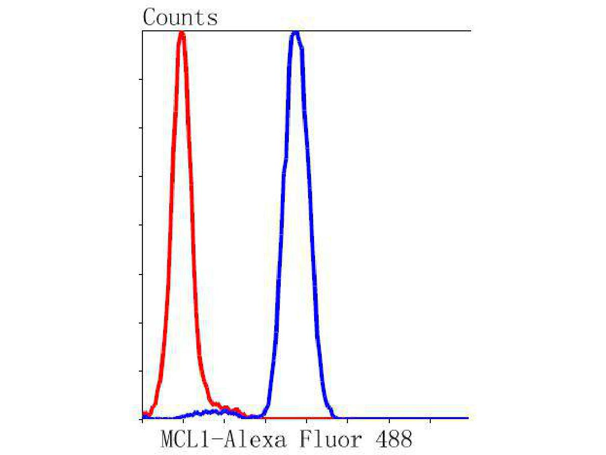 Flow cytometric analysis of MCL1 was done on Jurkat cells. The cells were fixed, permeabilized and stained with the primary antibody (ET1606-14, 1/50) (blue). After incubation of the primary antibody at room temperature for an hour, the cells were stained with a Alexa Fluor 488-conjugated Goat anti-Rabbit IgG Secondary antibody at 1/1000 dilution for 30 minutes.Unlabelled sample was used as a control (cells without incubation with primary antibody; red).