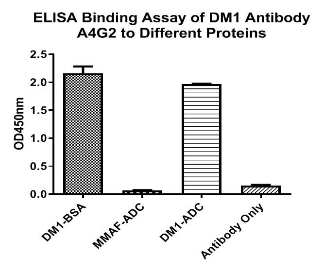 DM1 Mouse Monoclonal Antibody [A4G2] (HA600013) - HUABIO