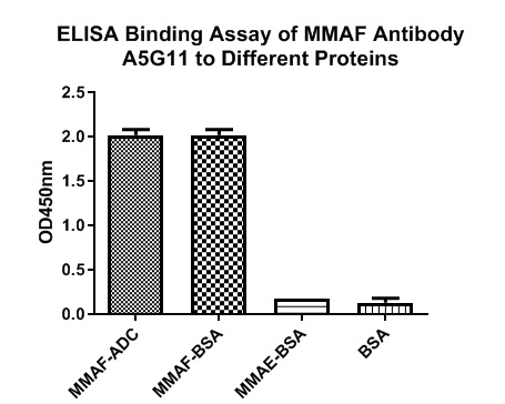 The binding activity of HA600035 with MMAF-ADC, MMAF-BSA, MMAE-BSA, DM1-ADC and BSA protein at 1 μg/ml overnight at 4℃. Then blocked with 1% BSA for 1 hour at 37℃, and incubated with the primary antibody (HA600035) for 1 hour at 25℃.<br /> <br /> Mouse anti-MMAF Ab (HA600035) can bind to MMAF-ADC or MMAF-BSA but not BSA or MMAE-BSA.