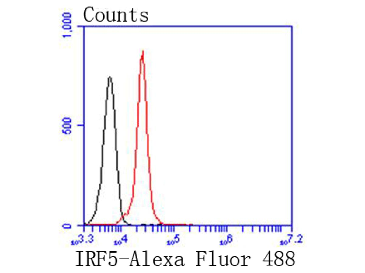 Flow cytometric analysis of IRF5 was done on K562 cells. The cells were fixed, permeabilized and stained with the primary antibody (ET1611-94, 1/50) (red). After incubation of the primary antibody at room temperature for an hour, the cells were stained with a Alexa Fluor 488-conjugated Goat anti-Rabbit IgG Secondary antibody at 1/1000 dilution for 30 minutes.Unlabelled sample was used as a control (cells without incubation with primary antibody; black).