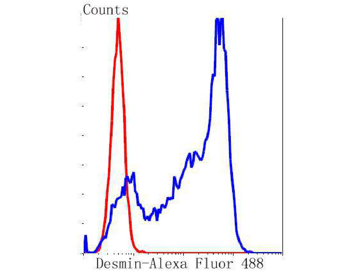 Flow cytometric analysis of Desmin was done on C2C12 cells. The cells were fixed, permeabilized and stained with the primary antibody (ET1606-30, 1/50) (blue). After incubation of the primary antibody at room temperature for an hour, the cells were stained with a Alexa Fluor 488-conjugated Goat anti-Rabbit IgG Secondary antibody at 1/1000 dilution for 30 minutes.Unlabelled sample was used as a control (cells without incubation with primary antibody; red).