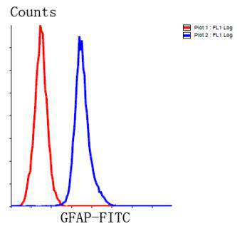 Flow cytometric analysis of GFAP was done on Hela cells. The cells were fixed, permeabilized and stained with the primary antibody (EM140707, 1/100) (blue). After incubation of the primary antibody at room temperature for an hour, the cells were stained with a Alexa Fluor 488-conjugated Goat anti-Rabbit IgG Secondary antibody at 1/1000 dilution for 30 minutes.Unlabelled sample was used as a control (cells without incubation with primary antibody; red).