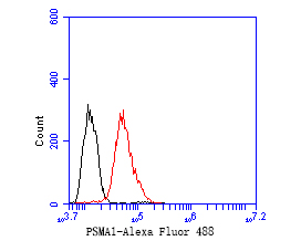 Flow cytometric analysis of PSMA1 was done on HepG2 cells. The cells were fixed, permeabilized and stained with the primary antibody (ET1706-19, 1/50) (red). After incubation of the primary antibody at room temperature for an hour, the cells were stained with a Alexa Fluor 488-conjugated Goat anti-Rabbit IgG Secondary antibody at 1/1000 dilution for 30 minutes.Unlabelled sample was used as a control (cells without incubation with primary antibody; black).