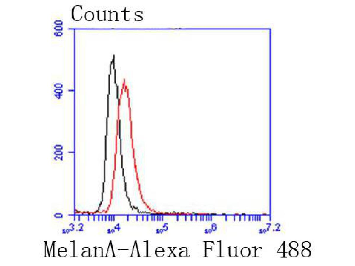 Flow cytometric analysis of MelanA was done on B16F1 cells. The cells were fixed, permeabilized and stained with the primary antibody (ET1610-47, 1/50) (red). After incubation of the primary antibody at room temperature for an hour, the cells were stained with a Alexa Fluor 488-conjugated Goat anti-Rabbit IgG Secondary antibody at 1/1000 dilution for 30 minutes.Unlabelled sample was used as a control (cells without incubation with primary antibody; black).