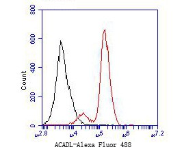 Flow cytometric analysis of ACADL was done on F9 cells. The cells were fixed, permeabilized and stained with the primary antibody (ER1901-11, 1/50) (red). After incubation of the primary antibody at room temperature for an hour, the cells were stained with a Alexa Fluor 488-conjugated Goat anti-Rabbit IgG Secondary antibody at 1/1000 dilution for 30 minutes.Unlabelled sample was used as a control (cells without incubation with primary antibody; black).
