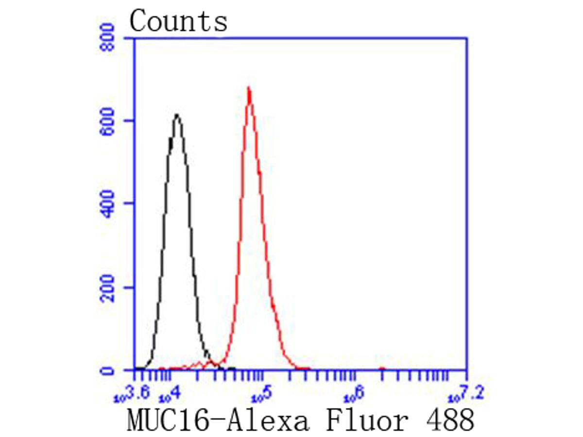 Flow cytometric analysis of MUC16 was done on Hela cells. The cells were fixed, permeabilized and stained with the primary antibody (ET1611-73, 1/50) (red). After incubation of the primary antibody at room temperature for an hour, the cells were stained with a Alexa Fluor 488-conjugated Goat anti-Rabbit IgG Secondary antibody at 1/1000 dilution for 30 minutes.Unlabelled sample was used as a control (cells without incubation with primary antibody; black).